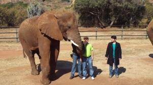 un beso de elefanta... uchhh